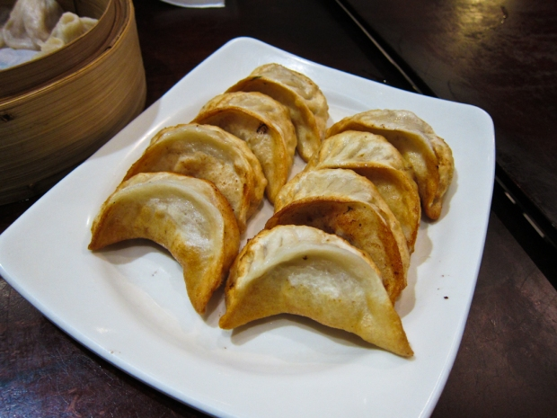 Pan fried pork dumplings