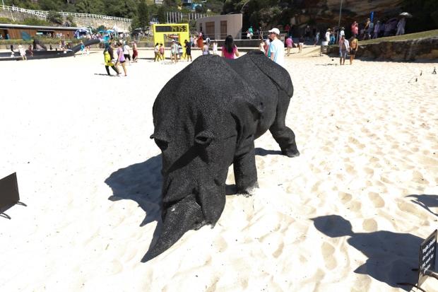 gift of the rhinoceros. Mikeala Castledine